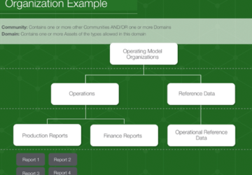 Operating Model Organization